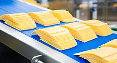 sliced cheese manufacturing